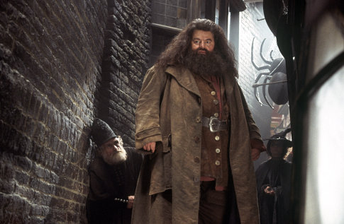 Harry Potter - Rubeus Hagrid 3