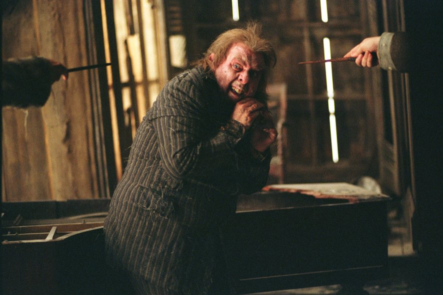 Wormtail harry potter - Harry potter et la coupe de feu cedric diggory ...