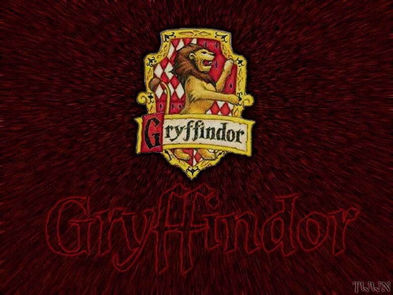 Gryffindor Harry Potter 1
